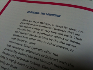 Blogging: The Lowdown