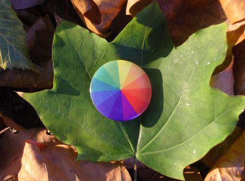 Autumn_green