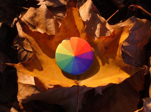 Autumn_orange
